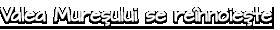Valea Mureşului se reînnoieşte